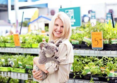 Mobile Zoo Koala