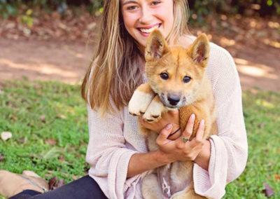 dingo-puppy-encounter