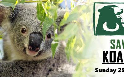 New Wildlife HQ Website Launch